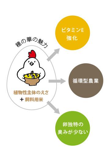 食菜卵 穂の華